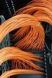 Cables de la red Imagen de archivo libre de regalías