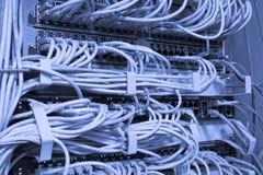 Cables de la red conectados Imagen de archivo libre de regalías