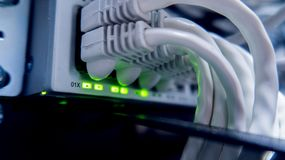 Cables de la red conectados con el interruptor Eje de la red imagen de archivo libre de regalías