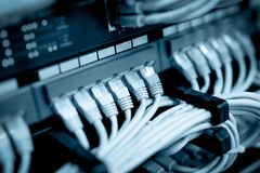 Cables de la red conectados en interruptores de red imágenes de archivo libres de regalías