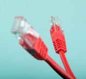 Cables de la red de Ethernet Fotografía de archivo