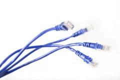 Cables de la red del color Fotos de archivo libres de regalías
