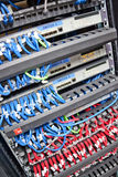 Cables de la red del servidor Fotografía de archivo