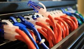 Cables de la red en un cuarto del servidor con uno desenchufado Imagen de archivo libre de regalías