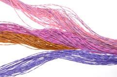 Cables del color de la red de ordenadores Imagenes de archivo