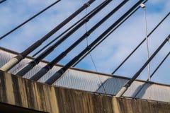 Cables del puente Fotografía de archivo