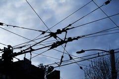 Cables del transporte público, Seattle imagenes de archivo