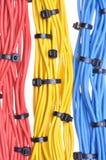 Cables eléctricos de los colores con las bridas de plástico Imagen de archivo