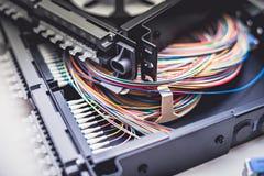 Cables fibroópticos en el panel de distribución del remiendo Foto de archivo libre de regalías
