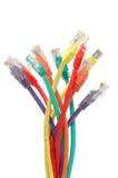 Cables multi de la red del color Imagen de archivo libre de regalías