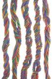 Cables multicolores del equipo de red Foto de archivo libre de regalías
