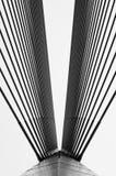 Cables and Poles of Wawasan Bridge Royalty Free Stock Photos