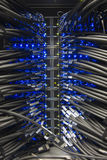 Cables of a server Stock Image