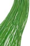 Cables verdes Fotografía de archivo libre de regalías
