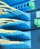 Cables y servidores ópticos de la red Imagenes de archivo