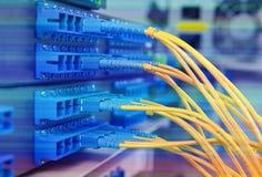 Cables y servidores ópticos de la red Imagen de archivo libre de regalías