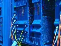 Cables y servidores ópticos de la red Fotografía de archivo libre de regalías