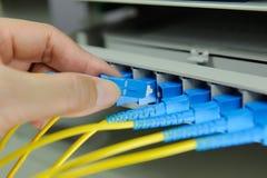 Cables y servidores ópticos de la red Fotos de archivo libres de regalías
