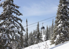 Cableway in the forest, winter Stock Photography