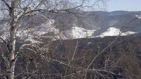 Cableway i bergen stock video