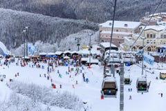 Cablewayskidlift och den sprang om zonen på landskap för vinter för snöig trädbakgrund härligt Arkivfoton