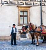 Cabman in Krakow Stock Image