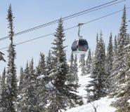 Cabo aéreo na floresta, inverno Fotos de Stock Royalty Free