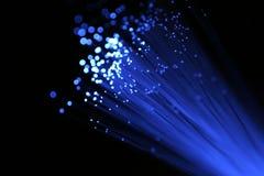 Cabo azul da fibra óptica Fotos de Stock Royalty Free