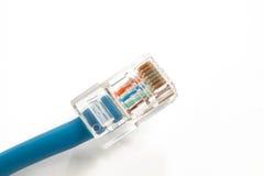 Cabo azul do Internet imagem de stock