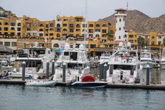 Cabo Charter Boats Stock Image