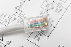 Cabo da rede informática (RJ45) imagem de stock