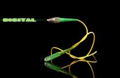 Cabo da tecnologia das fibras óticas com sinal de saída digital imagem de stock