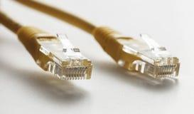 Cabo de dados dos ethernet foto de stock royalty free
