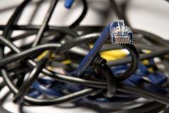 Cabo de Ethernet (4) Imagem de Stock