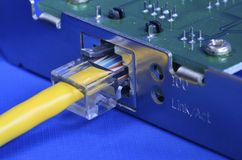 Cabo de Ethernet no cartão de rede Imagens de Stock