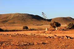 CABO DE GATA沙漠  免版税库存图片