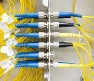 Cabo de remendo da fibra ótica na caixa da parede Imagem de Stock