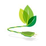 Cabo distribuidor de corrente de dois pinos com conceito do eco Imagens de Stock Royalty Free