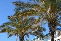 Cabo Espichel Stockfotos
