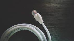 Cabo ethernet - conectores da cabeça RJ45 imagem de stock