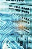 cabo ethernet em interruptores de rede fotos de stock