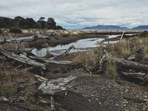 Cabo Froward trek. Landscape around Punta Arenas. Tierra del Fuego. Chile. Cabo de Hornos Stock Photography