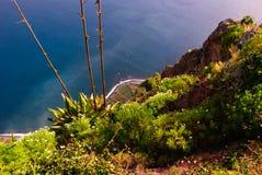 Cabo Girao, Madera Immagine Stock