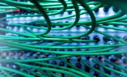 Cabo oaxial do ¡ de Ð para o servidor da transmissão de dados  Fim acima Foto de Stock