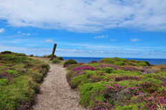 Cabo penas, Asturias, Spain Royalty Free Stock Image