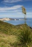 Cabo Reinga Foto de archivo