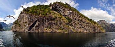 Cabo rocoso y el vuelo de gaviotas noruega Verano Panorama Fotos de archivo libres de regalías
