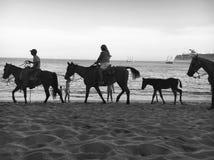 Cabo San Lucas Fotografía de archivo libre de regalías