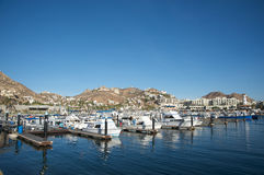 Cabo San Lucas marina Royalty Free Stock Images