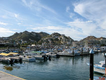Cabo San Lucas Marina with Boats Royalty Free Stock Photography